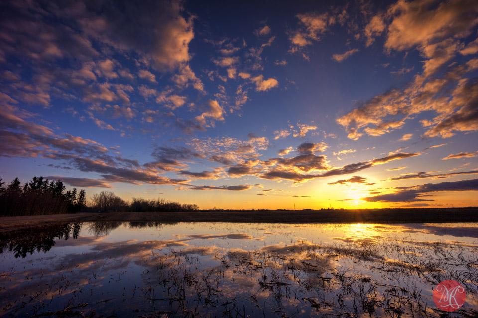 alberta landscape sunset field