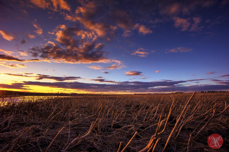 sunset alberta landscape edmonto