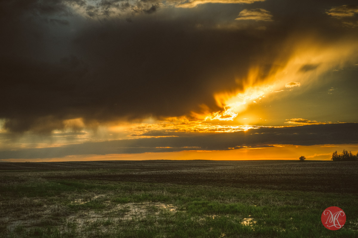 sunset alberta spring landscape photography