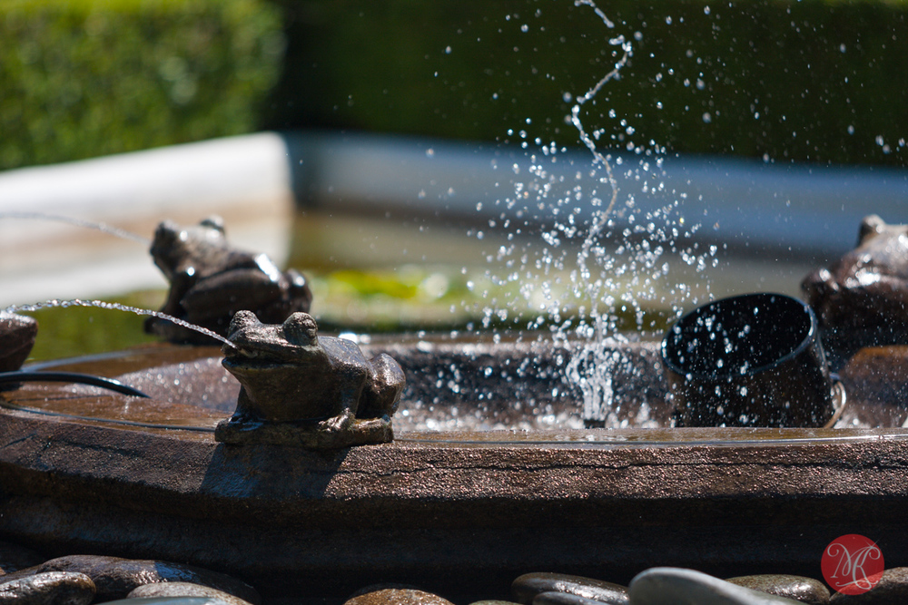 Butchart Gardens, Victoria, BC .. 21