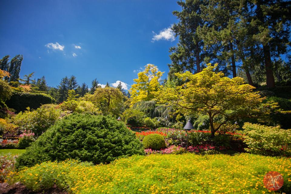 Butchart Gardens, Victoria, BC .. 6