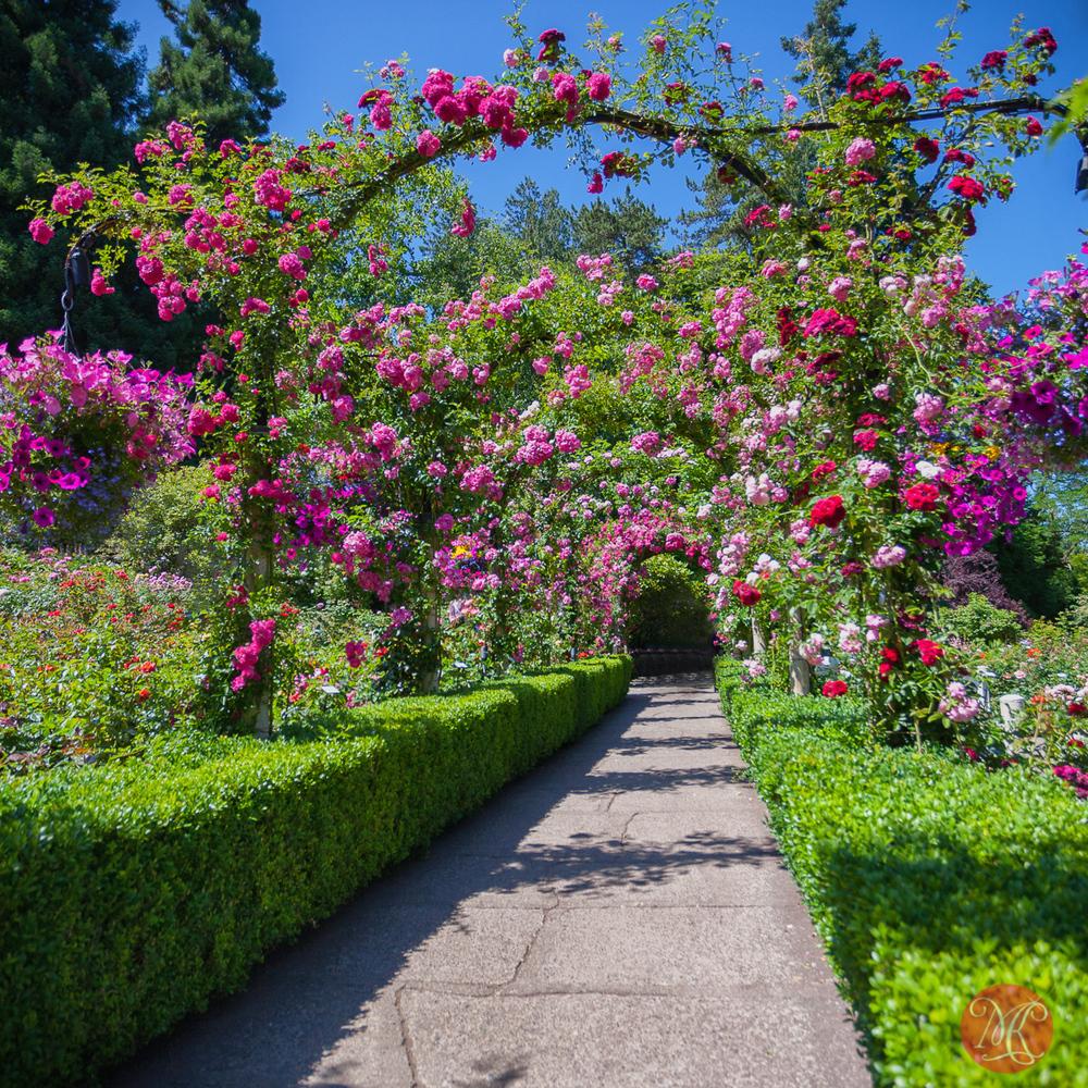 Butchart Gardens, Victoria, BC .. 12