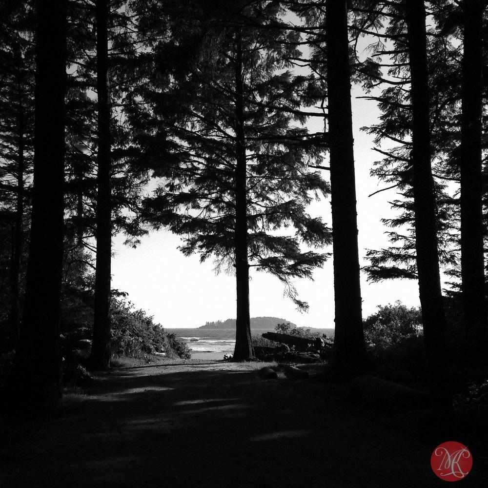 long,beach,bc,tavel,sea,landscape,photography 02