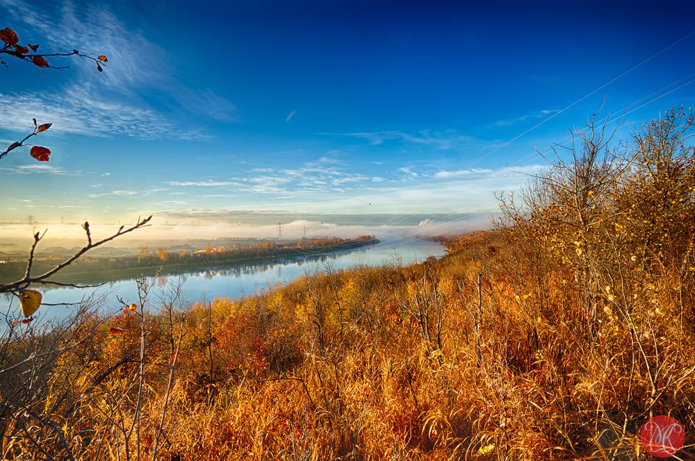 Foggy fall morning in Alberta