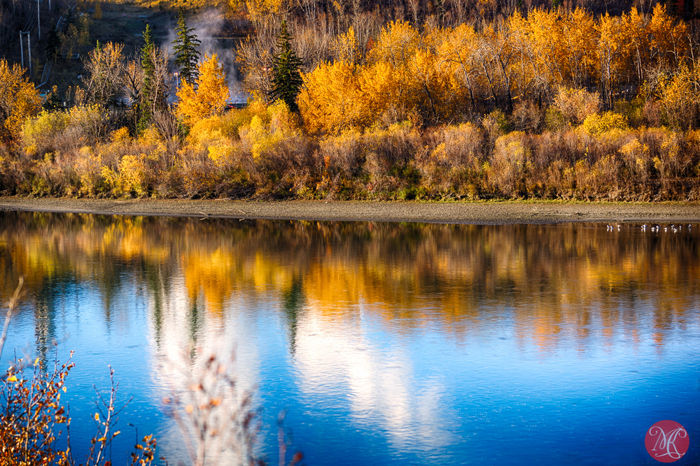 Edmonton River Valley - Fall - Alberta Landscape Photography