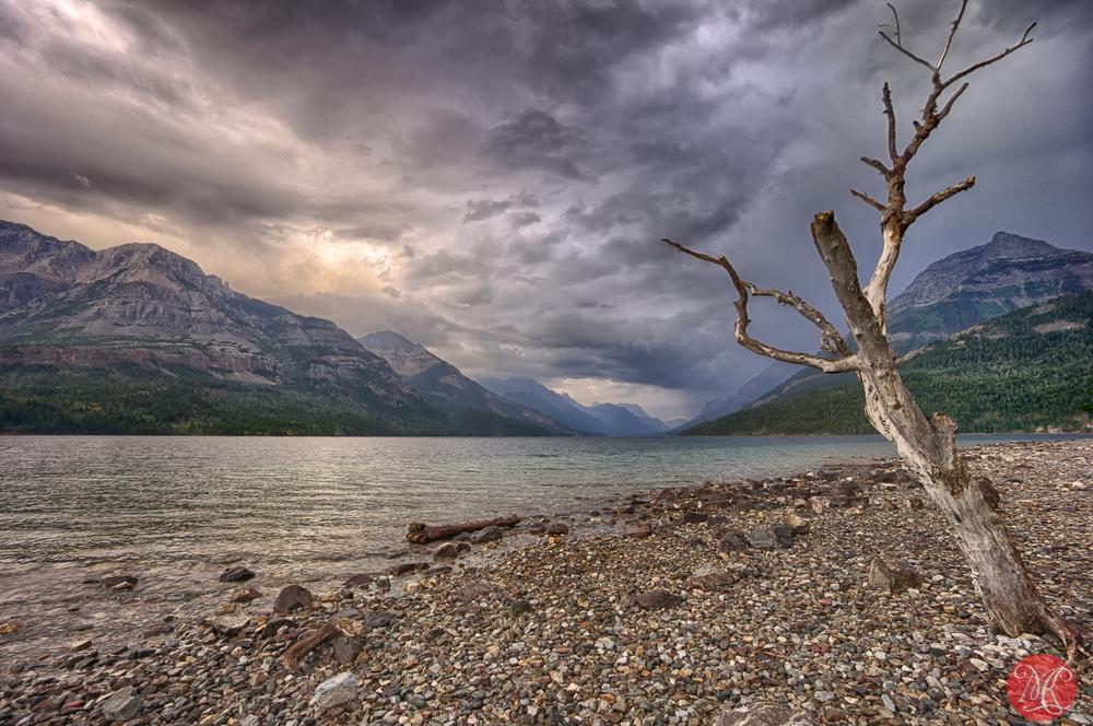 Waterton - Alberta Landscape