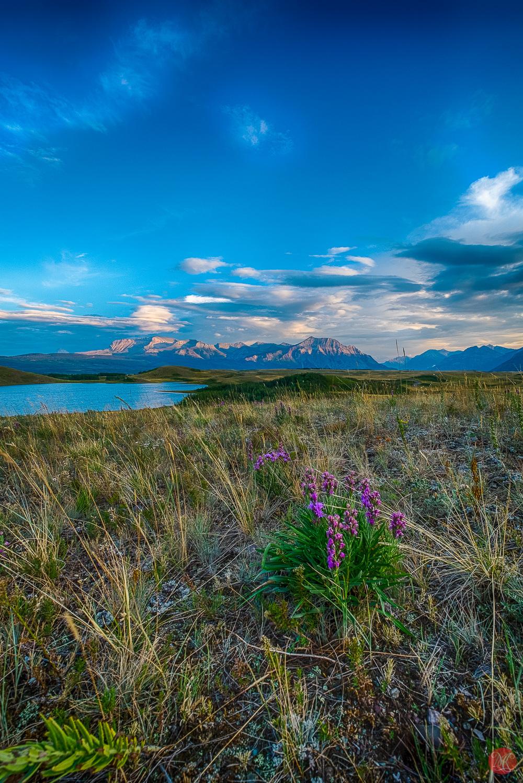 Sunset at Waterton National Park Alberta