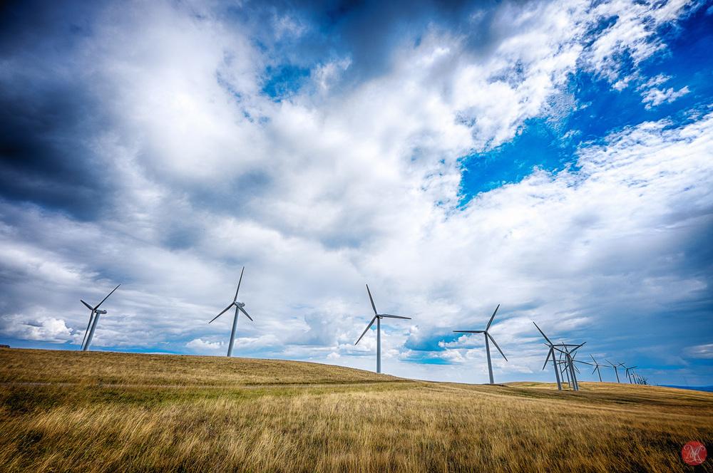 Alberta windmills on a flat prairie