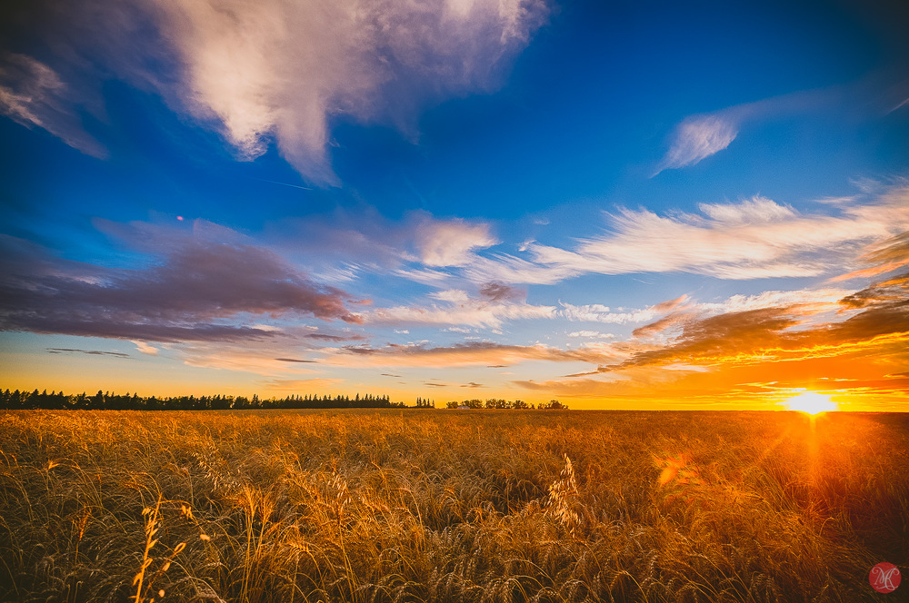 Beautiful skies at harvest time - Alberta Landscape