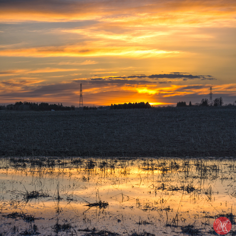 Spring Sunset on the Prairies
