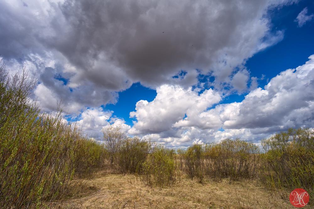 Alberta Sky - Landscape Photography