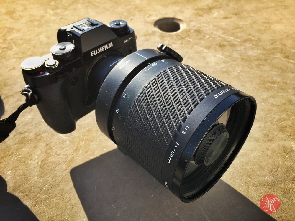 Fuji X-T1 and Digma 600mm f8 mirror lens