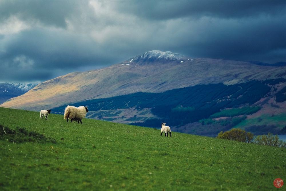 Scotland with Fuji X camera