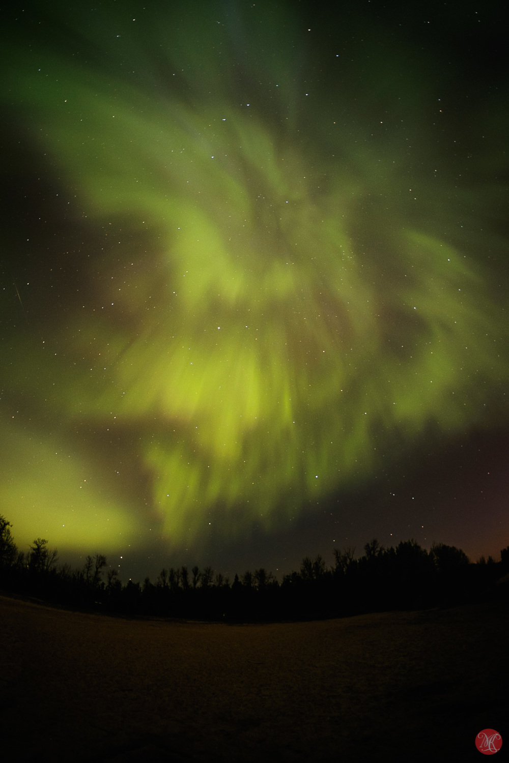 Image of Aurora over Elk Island National Park Alberta