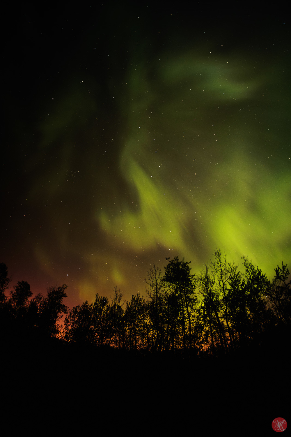 Image of Northern Lights over Elk Island National Park Alberta
