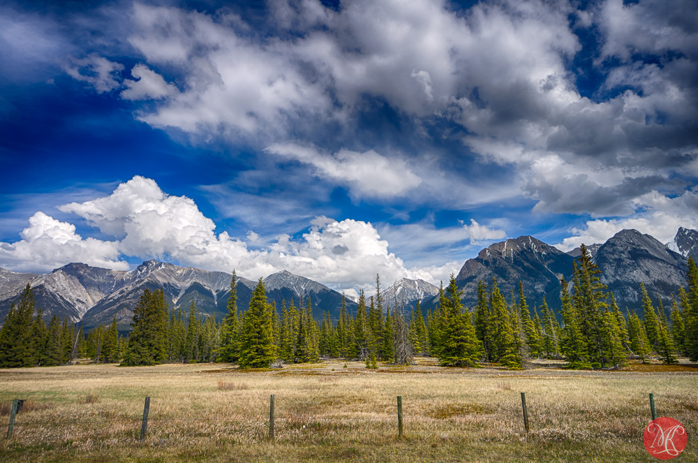 Kootenay Plains