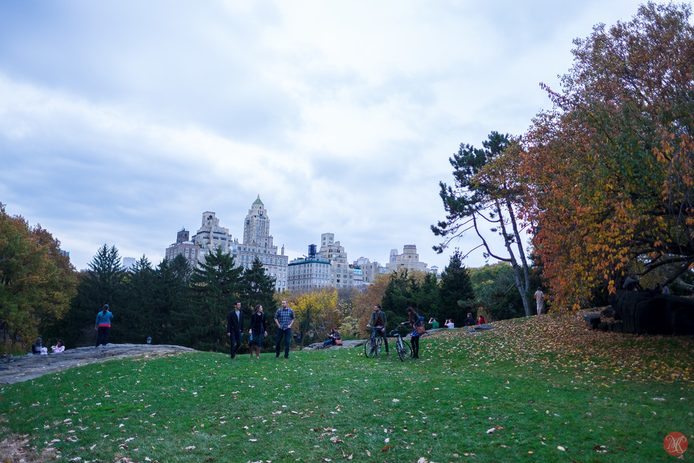 Fall in Central Park New York