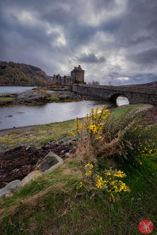 Spring in Scotland 5