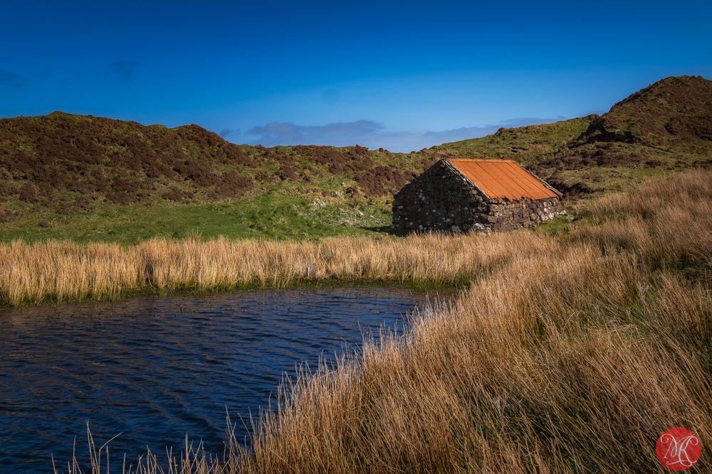A hut by a pond