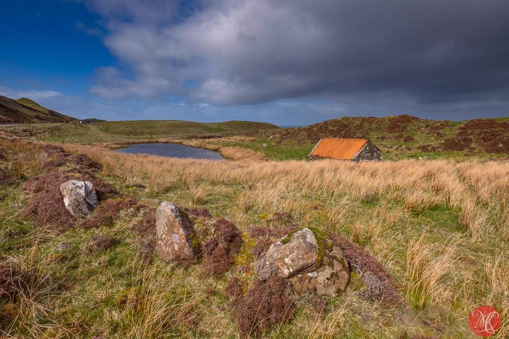 A hut by a pond 3