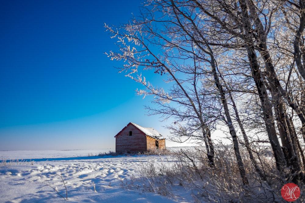 Winter scenes 3