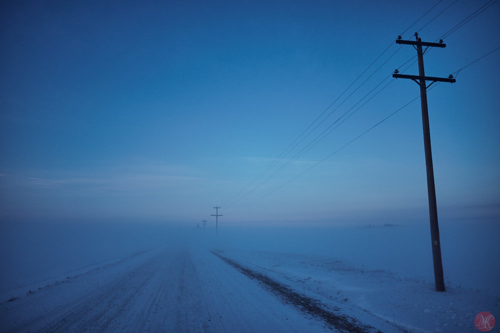 Frost fog rural Alberta