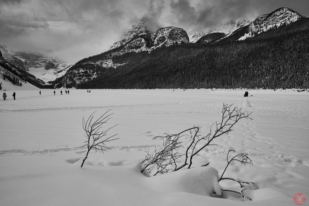Snow covered Lake Louise Alberta