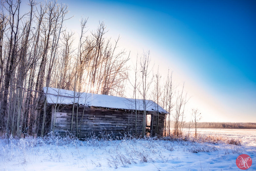 Beautiful winter on the prairies 1