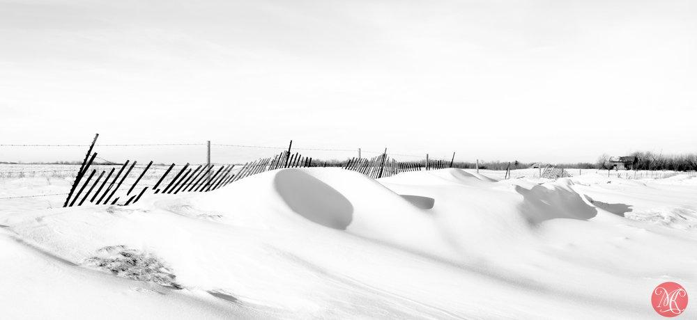 Simply winter