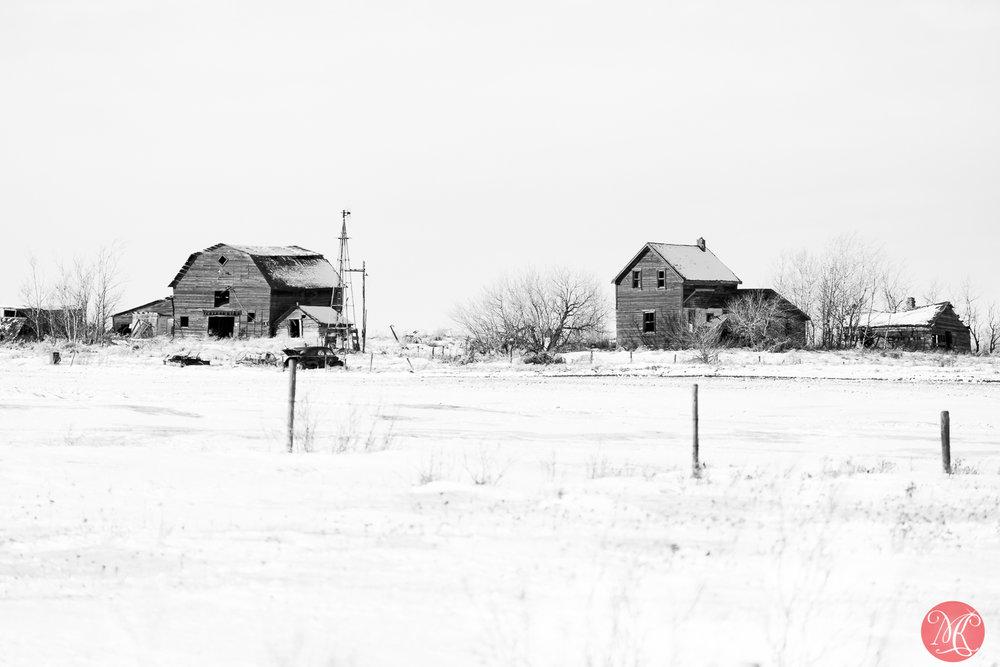 Simply winter 2
