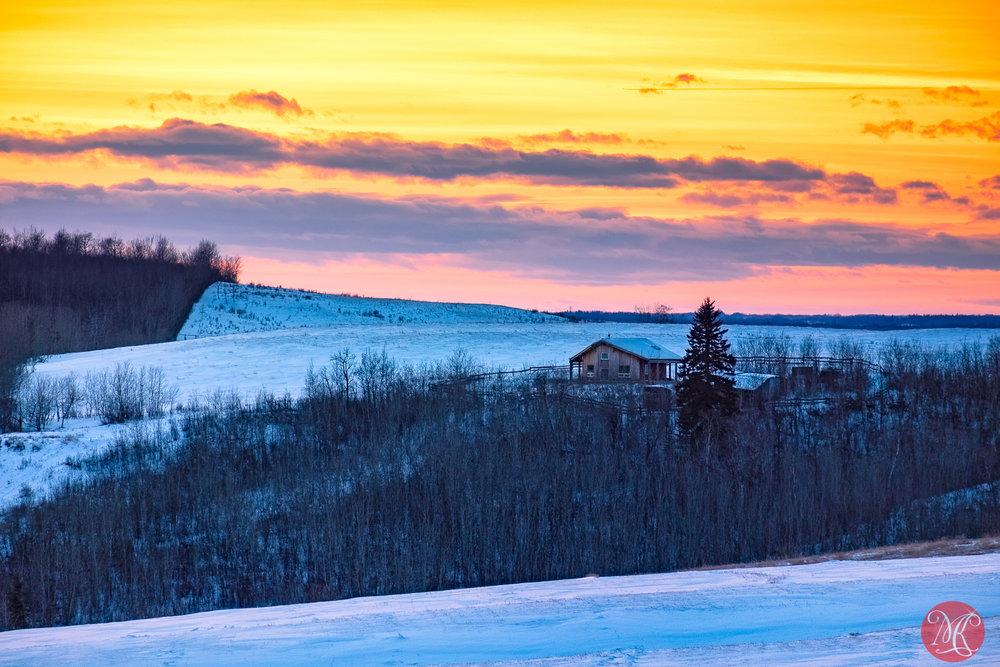 Evening in rural Alberta