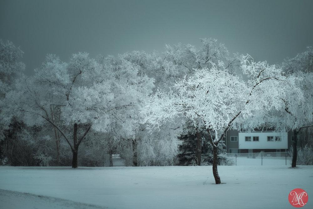 Glowing frost