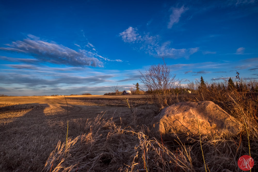 Spring on the prairies 1