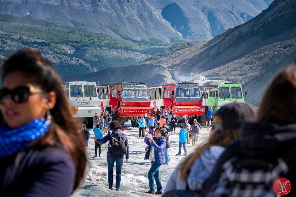 Athabasca Glacier 6