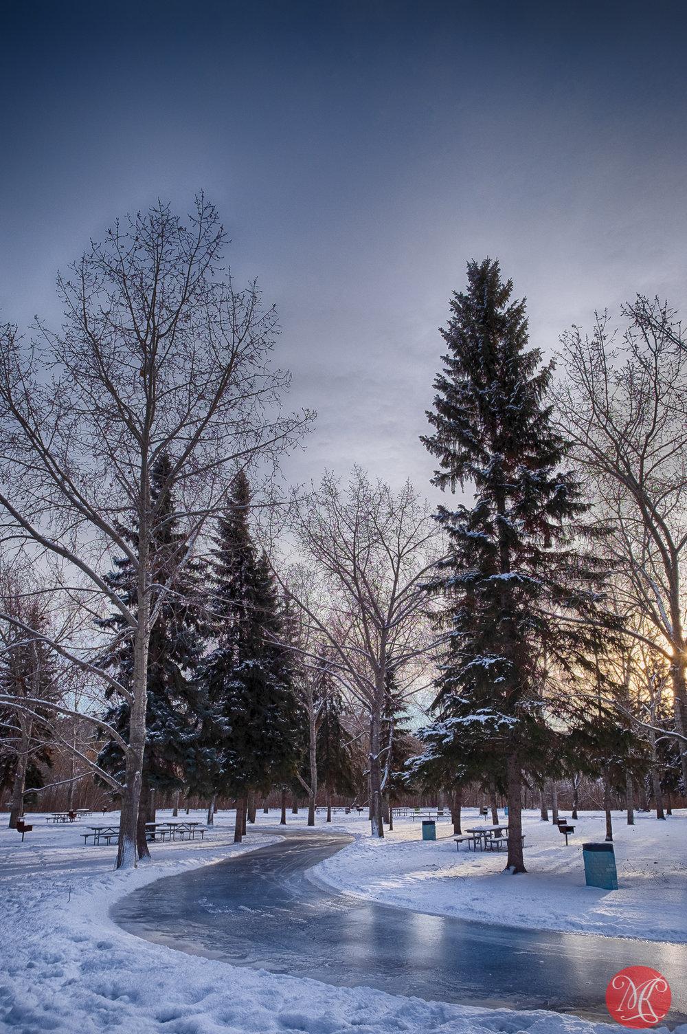 Morning at the park 5