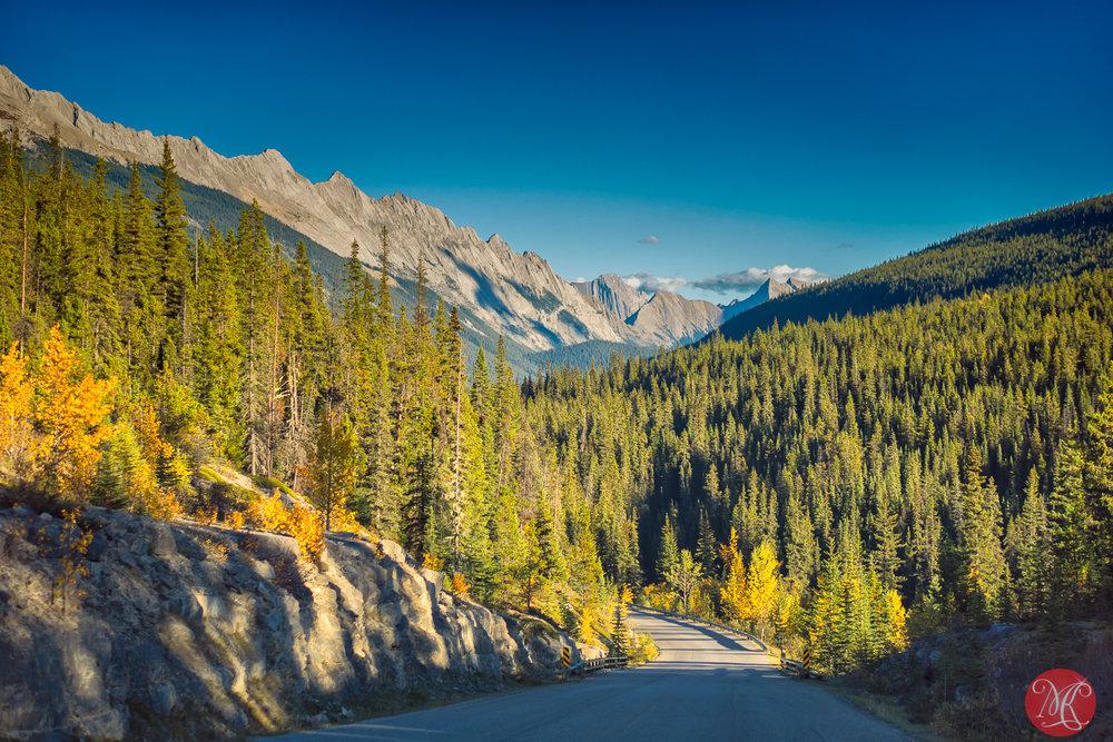 Fall in Jasper 2