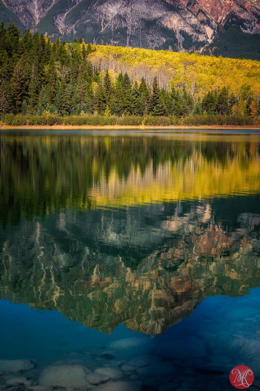 Fall in Jasper 7
