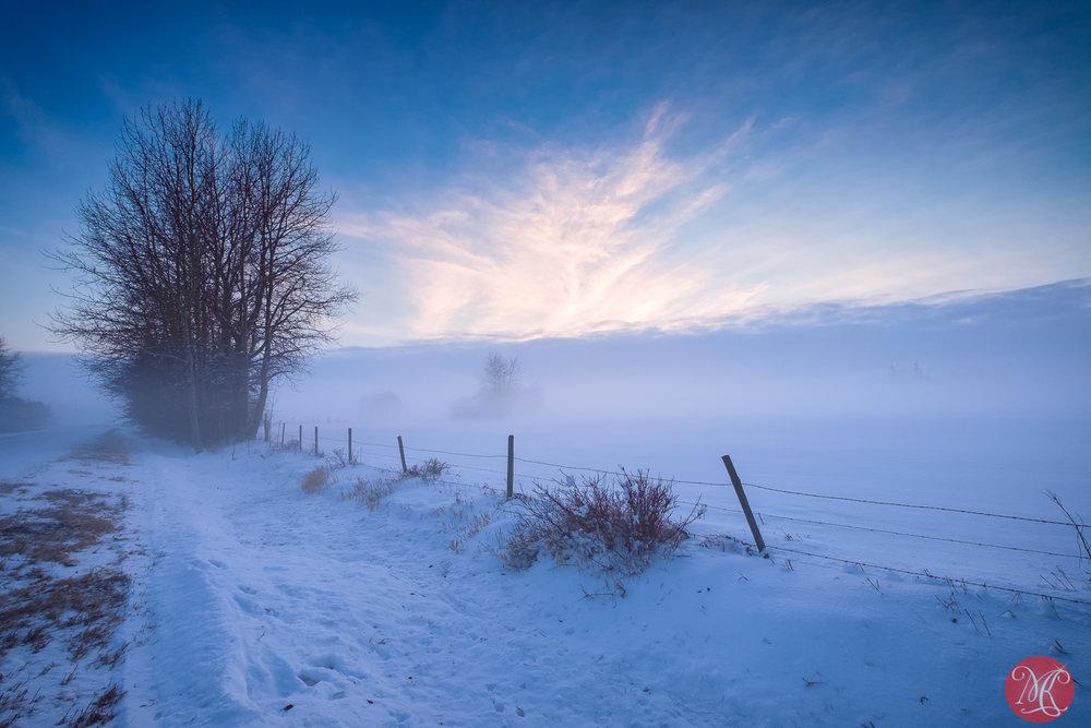 Winter scenes 8