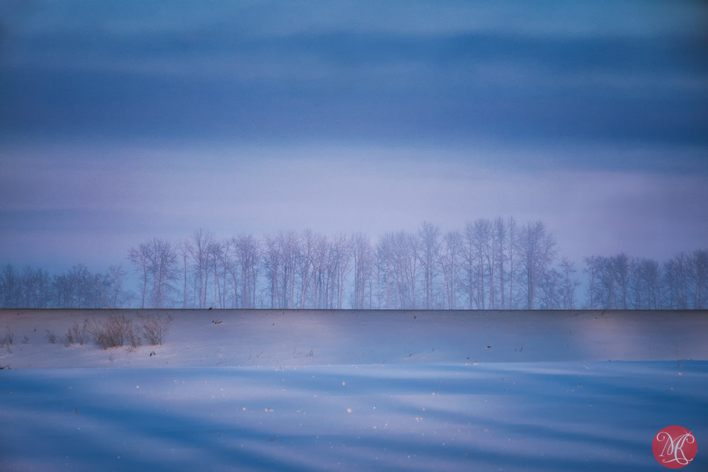 Winter scenes 5