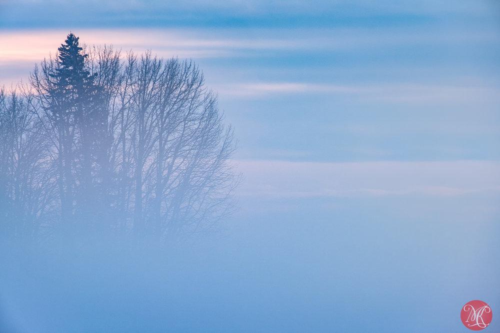 Winter scenes 7