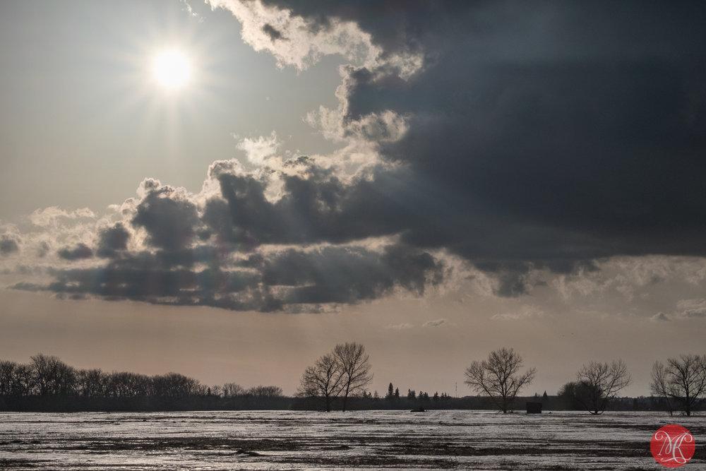 Afternoon on the prairies 3