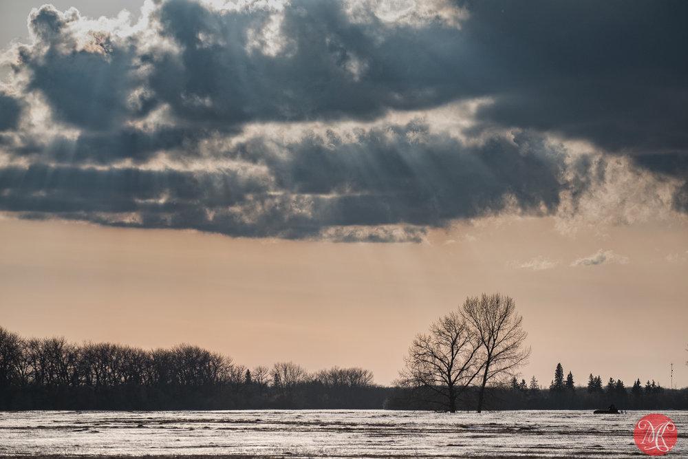 Afternoon on the prairies