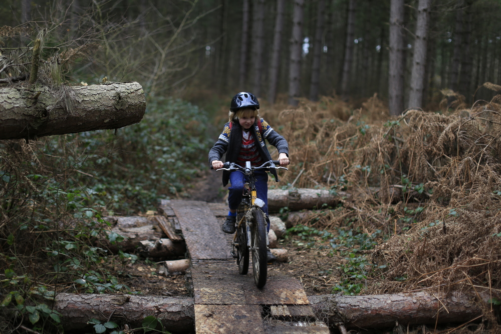 singletrack, woods, photography, canon, canon 6d, nature, cycling, blog, cycle gear, review