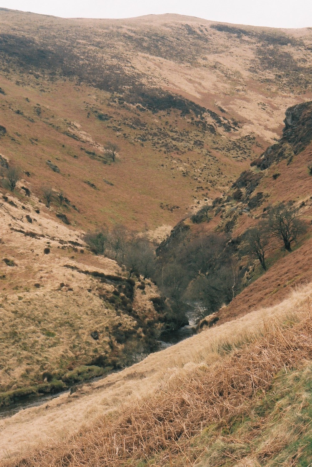 wales, bicycle touring apocalypse, travel, bikepacking, mountains, bikepacking blog, bicycle touring, photography, photography blog, canon, canon ae-1, camera, film is not dead, film photography, 35mm, jack macgowan, photographer, landscape, landscape photography, cycling, cycling blog