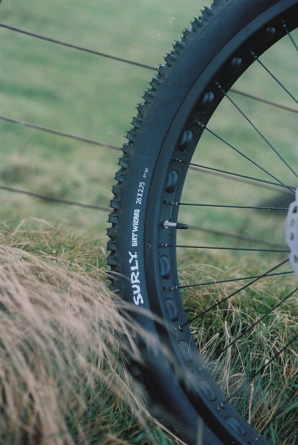 Surly Dirt Wizard tyres....no punctures & grip for days...nuff said.