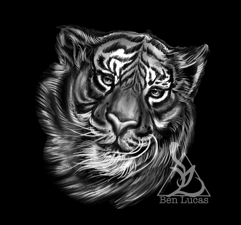 Bevs-Tiger-black-and-grey-sketch-for-tattoo-on-shoulder-done-by-Ben-Lucas-at-Eye-of-Jade-in-Chico-CA