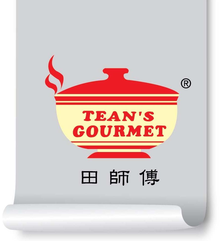 Tean Logo _Color-01_Brand Logo-- UPDATED JULY 2016.jpg