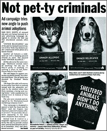 ACCNYC_newspaper_430.jpg