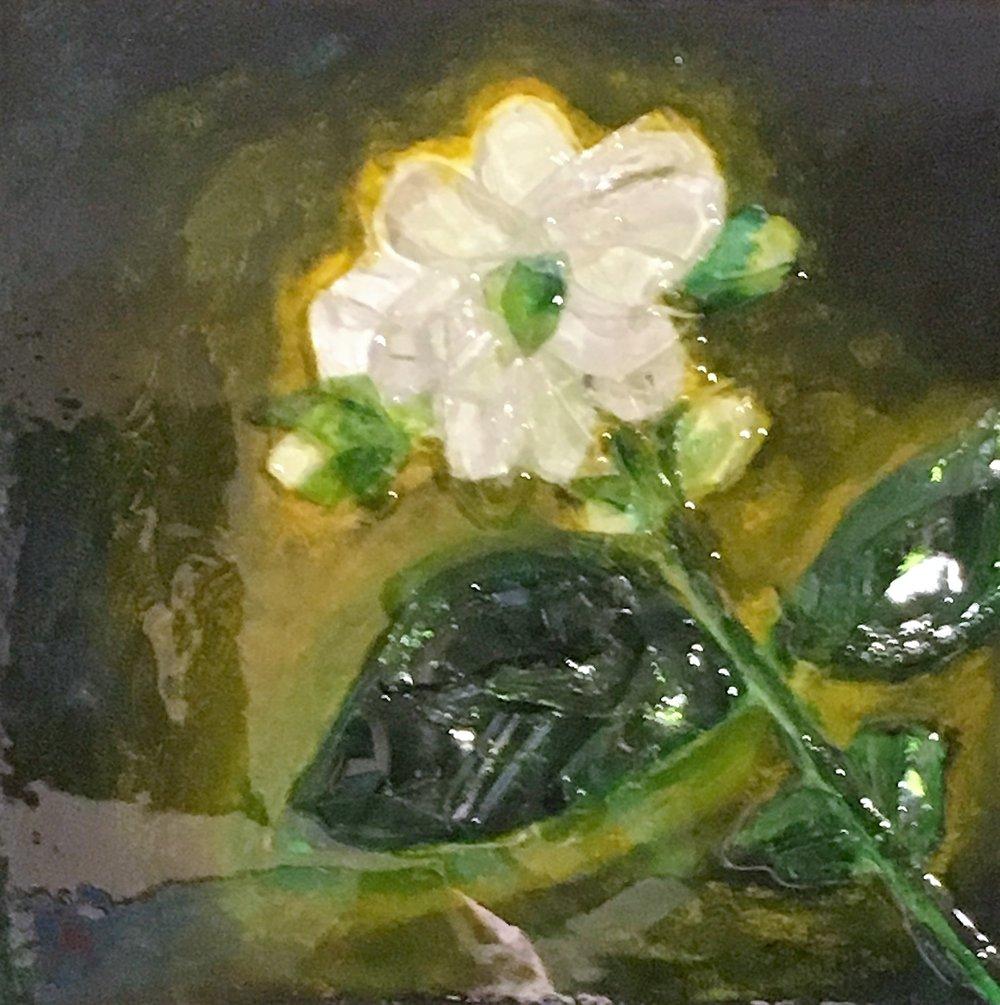 1 white flower.jpg