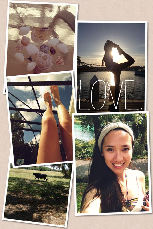 1yr Collage